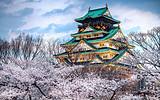 【自由大阪2+3】大阪5日欢购之旅 收大连户口+东三省户口