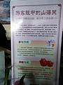 南京G1204 次到北戴河山海關承德清東陵五日游