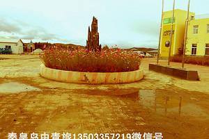 安徽广德县出发客人来北戴河清东陵共计当地三天行程