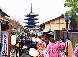 桂林出发 日本 樱花怒放 本州双古都樱之路 8日游
