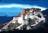 西藏旅游-拉萨、林芝、羊湖去卧回飞8日游