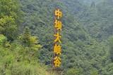 中坝大峡谷+汉江三峡+后柳水乡二日游