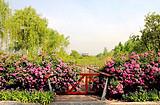 ◆西安西咸沣东沣河生态景区(AAA级股票开户类型选什么景区)