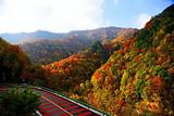 ◆黄柏塬原生态风景区(国家AAA级旅游景区)