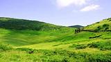 ◆汉中紫柏山风景区(国家AAA级旅游景区)