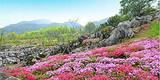 ◆陕西宝鸡太白县药王谷(国家AA级旅游景区