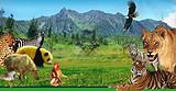 ◆西安秦岭野生动物园(AAAA级股票开户类型选什么景区)