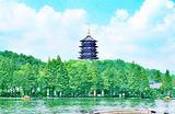 苏州出发_杭州一日游_船游西湖+三潭印月+花港观鱼+西溪湿地