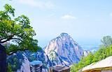 西安一日游 西岳华山纯玩跟团旅游