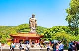 杭州苏州无锡三日游-狮子林D线_西湖游船、苏州园林、灵山大佛