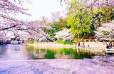 杭州上海周庄无锡四日游-C线_西湖、上海市区、周庄、鼋头渚