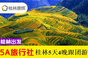 桂林漓江/興坪+銀子+世外+古東瀑布+龍脊5天4晚游-純享