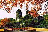 桂林象鼻山、芦笛岩、七星公园、伏波山、叠彩山一日游