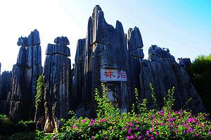 桂林出发到昆明大理丽双飞双动6天【藏地花开】