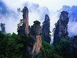【绝美张家界】桂林到张家界玻璃桥、森林公园、天门山双动五日游