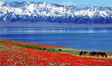 【樂享喀納斯】天池、吐魯番、喀納斯、五彩灘、白沙湖雙飛8日游