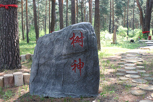 黑河旅行社強力推薦/上海到黑河旅游黑河愛輝森林公園原生態二日