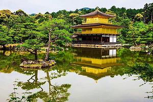 官网官网国旅集团/日本签证旅游单次