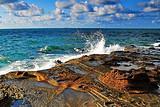 北海去涠洲岛一日游报价_赠送疍家簸箕宴海鲜餐