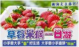 草莓采摘+吉林省科技馆1日游_长春周边哪里能采摘草莓
