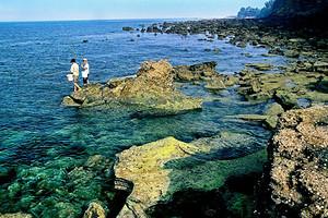 涠洲岛三天两晚游(北海接送,豪华游船)