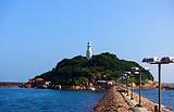 <青岛海边跟团一日游>含青岛海底世界、青岛海水浴场